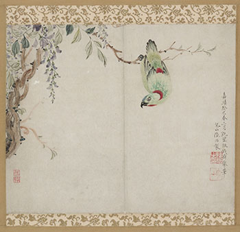 Pine and Parrot by Attributed to Lu Zhi
