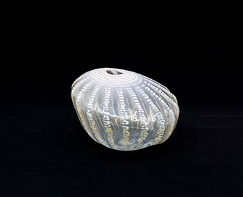 White Shell Shape by Dale Chihuly