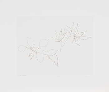 Untitled, Botanicals by Gordon Appelbe Smith