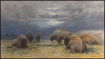 Buffalo Grazing During the Approaching Storm by Frederick Arthur Verner