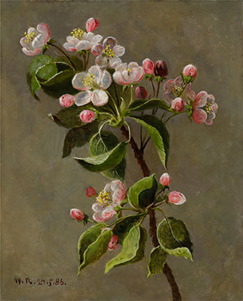 Still Life with Blossoms by William Raphael