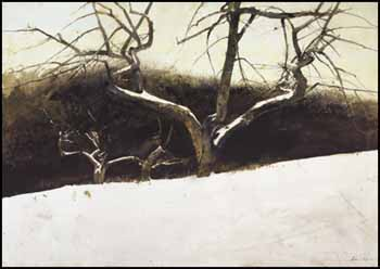Sunset by Andrew Wyeth