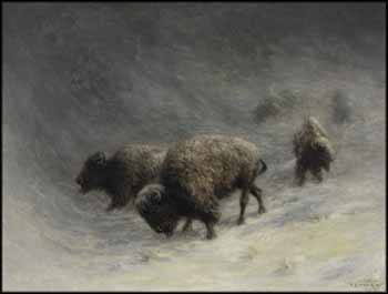 Buffalo in a Blizzard by Frederick Arthur Verner